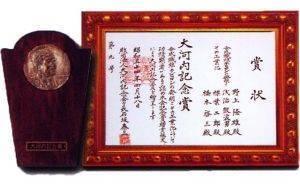 nefful okochi award